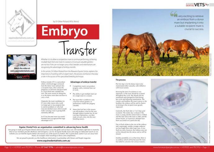 Embyro Transfer