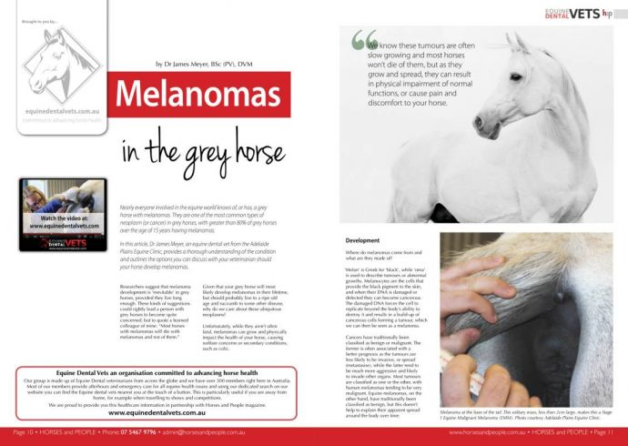 Melanomas in the Grey Horse
