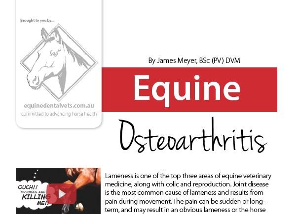 Equine Osteoarthritis