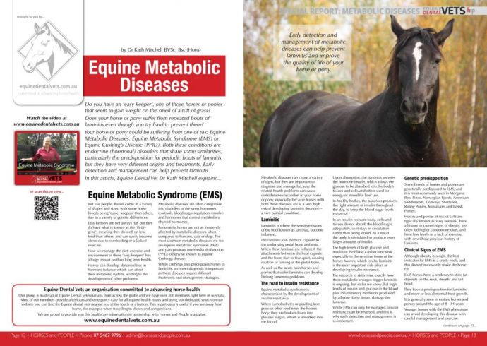 Equine Metabolic Disease