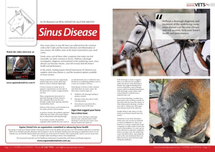 Sinus Disease in Horses