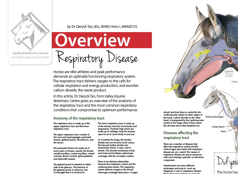 Respiratory Disease - Overview