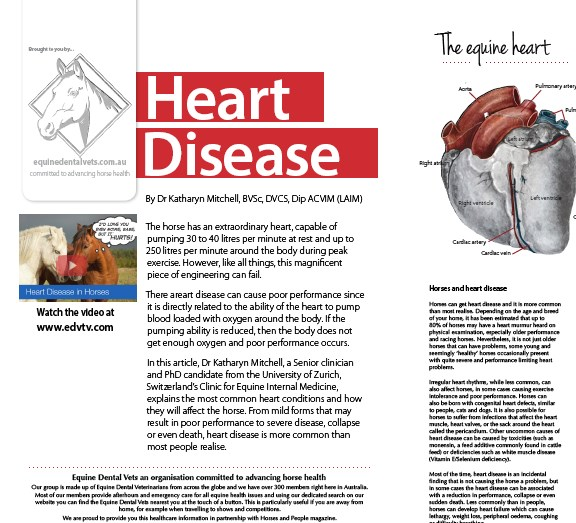 heart condition articles or reviews 2010