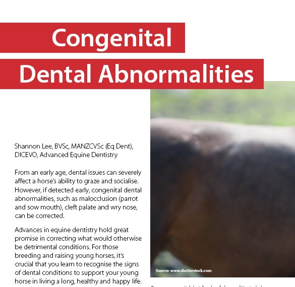Congenital Dental Abnormalities