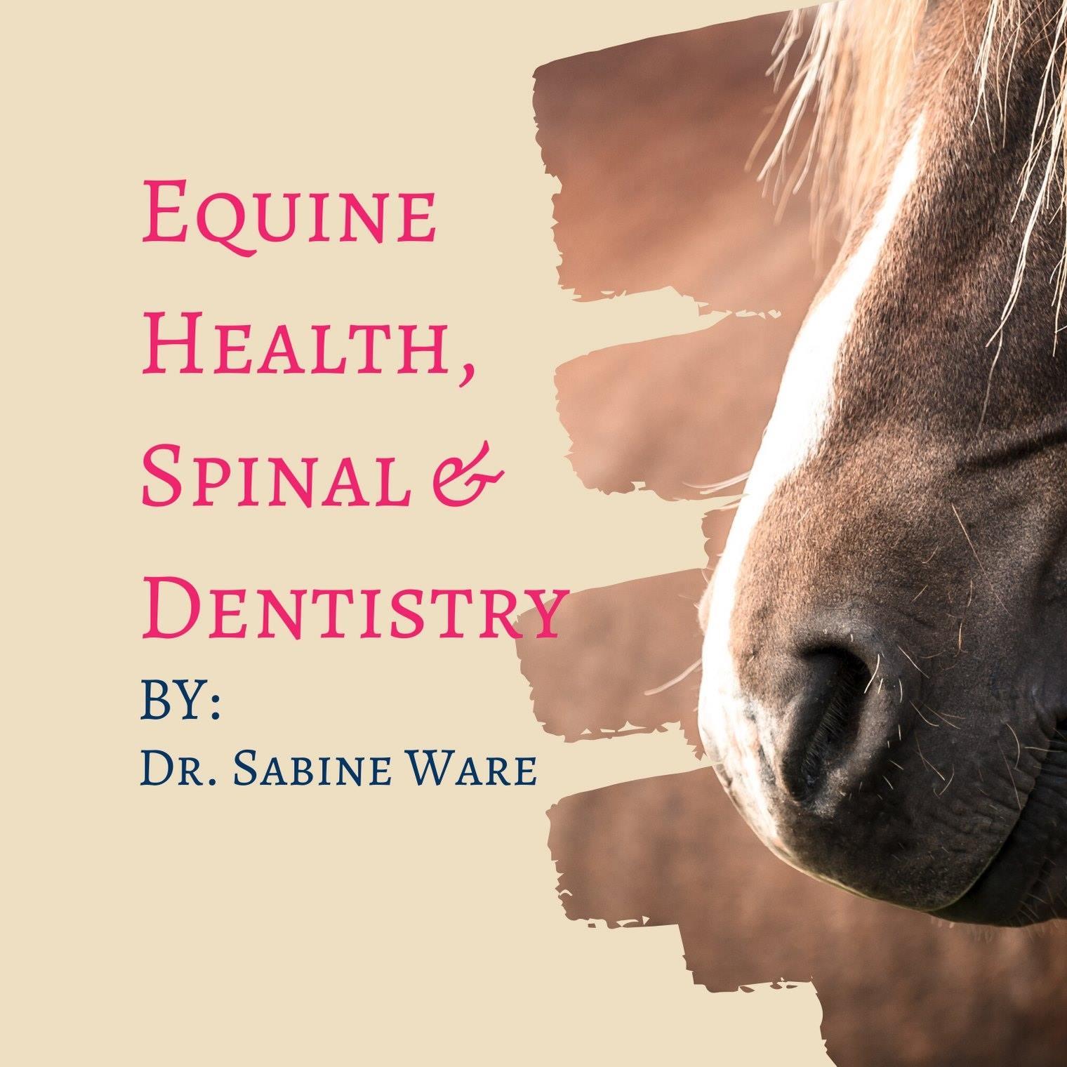 Dr Sabine Ware
