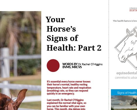 Your Horse's Signs of Health - Part 2